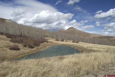 LOT 1 SPRUCE MOUNTAIN TRAIL, Ridgway, CO 81432 - Photo 2