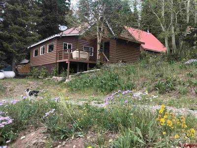 21657 BARON LAKE DR, Cedaredge, CO 81413 - Photo 1