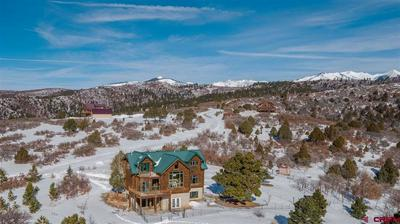 1554 ROBERTS RDG, HESPERUS, CO 81326 - Photo 1