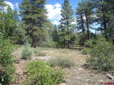 577 GINGER CIR, Pagosa Springs, CO 81147 - Photo 1