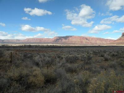 NO ADDRESS HWY 90, Bedrock, CO 81411 - Photo 2