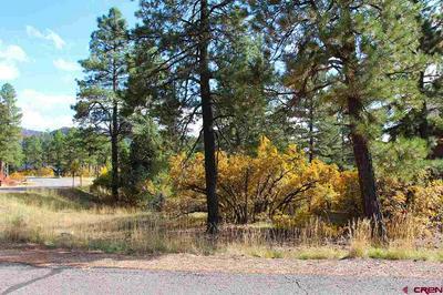 15 MILL CREEK CT, Durango, CO 81301 - Photo 2