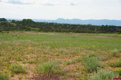 18601 ROAD 22.6, Lewis, CO 81327 - Photo 1