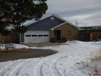 3181 COUNTY ROAD 1, MONTROSE, CO 81403 - Photo 2
