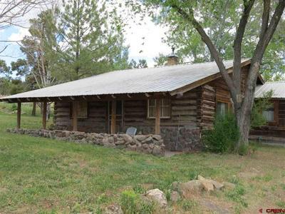 20246 GREEN VALLEY RD, Cedaredge, CO 81413 - Photo 2