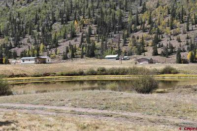 4100 USFS RD 515, Creede, CO 81130 - Photo 1