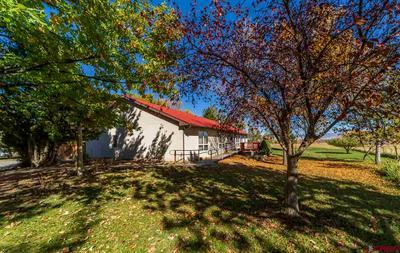 15250 6000 RD, Montrose, CO 81403 - Photo 2