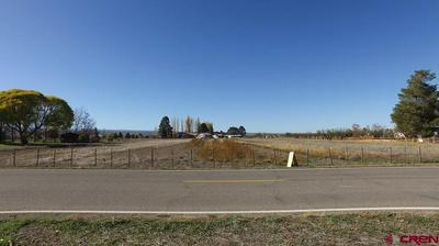 62787 HIGHWAY 90, Montrose, CO 81403 - Photo 2