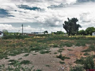 500 TRANQUILLO CT, Ignacio, CO 81137 - Photo 2
