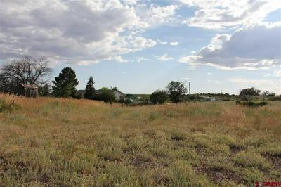 25985 HIGHWAY 491, Pleasant View, CO 81331 - Photo 1