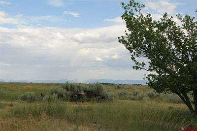 TBD ROAD AA, Pleasant View, CO 81331 - Photo 1