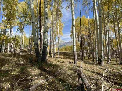 1754 RED MOUNTAIN RANCH RD, Crested Butte, CO 81224 - Photo 2
