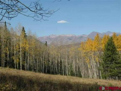 1626 RED MOUNTAIN RANCH RD, Crested Butte, CO 81224 - Photo 1