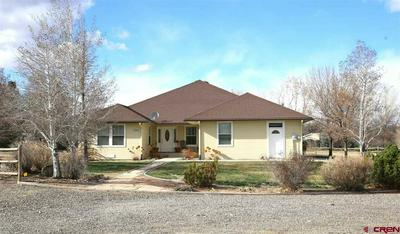 7095 BUENA VISTA RD, DELTA, CO 81416 - Photo 1