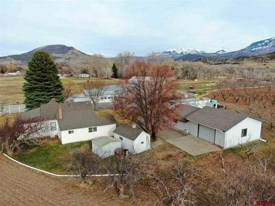 635 STAHL RD, PAONIA, CO 81428 - Photo 2