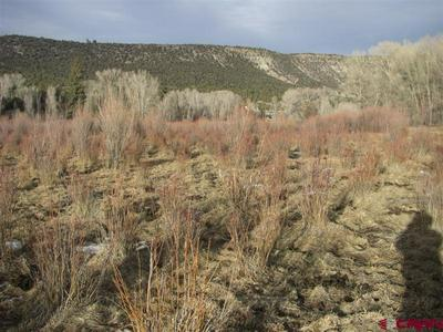 TBD COUNTY ROAD 24, Ridgway, CO 81432 - Photo 1