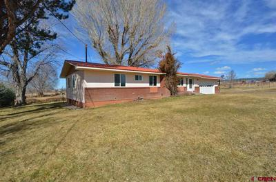 10083 3100 RD, HOTCHKISS, CO 81419 - Photo 1