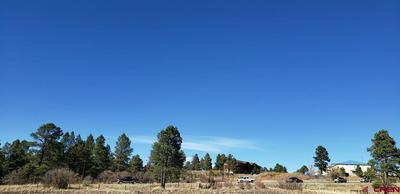 169 ACE CT, Pagosa Springs, CO 81147 - Photo 1