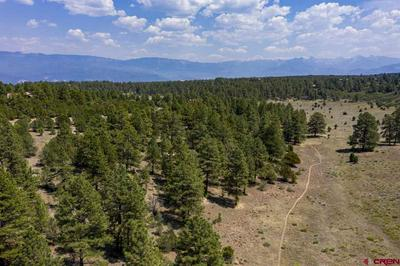 133 WHITE TAIL LN, Ridgway, CO 81432 - Photo 2