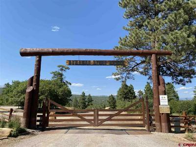 606 PERINS PEAK LN, Durango, CO 81301 - Photo 2