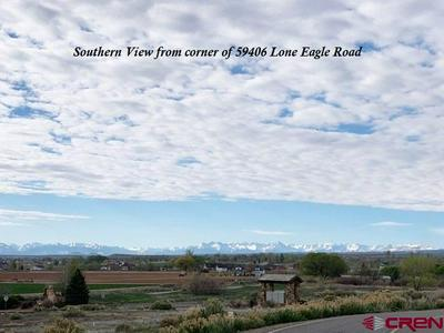 59406 LONE EAGLE RD, Montrose, CO 81403 - Photo 1