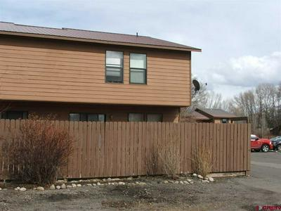 103 SHAVANO DR UNIT D1, GUNNISON, CO 81230 - Photo 2