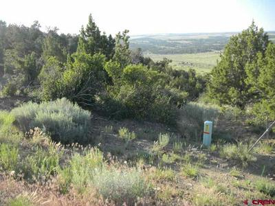 24251 ROAD V.4, Dolores, CO 81323 - Photo 1
