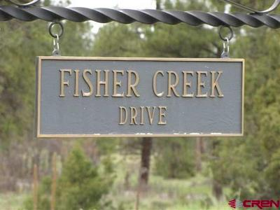 TBD FISHER CREEK ESTATES, Ridgway, CO 81432 - Photo 1