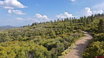 LOT # 37 W DURANGO RIDGE ROAD, Durango, CO 81301 - Photo 1