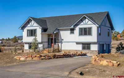238 DYLAN DR, Pagosa Springs, CO 81147 - Photo 1