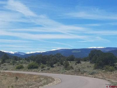 47 SILVER THREAD SCENIC, SOUTH FORK, CO 81154 - Photo 2