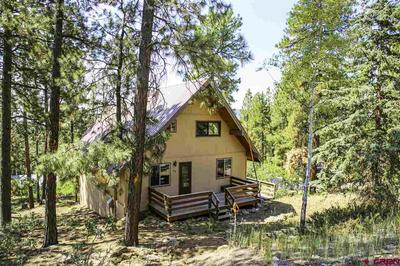 198 ANTELOPE DR, Bayfield, CO 81122 - Photo 1