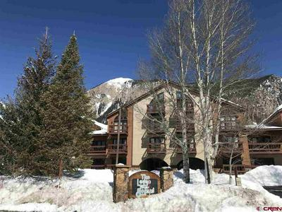 350 COUNTRY CLUB DR UNIT 219A, CRESTED BUTTE, CO 81224 - Photo 1