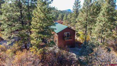 366 WEASEL DR, Pagosa Springs, CO 81147 - Photo 2