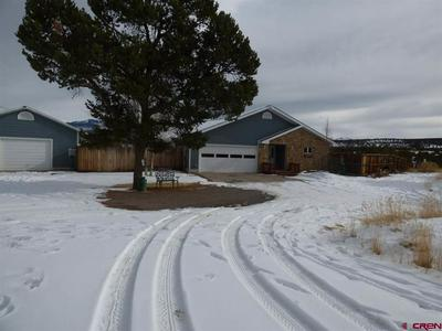 3181 COUNTY ROAD 1, MONTROSE, CO 81403 - Photo 1