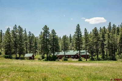 30908 US HIGHWAY 160, Bayfield, CO 81122 - Photo 1