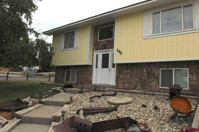 295 NW 10TH ST, Cedaredge, CO 81413 - Photo 2