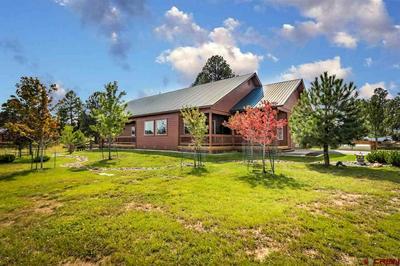529 MORRO CIR, Pagosa Springs, CO 81147 - Photo 2