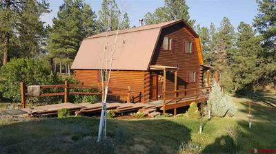 300 WHISPERING WOOD DR, PAGOSA SPRINGS, CO 81147 - Photo 1