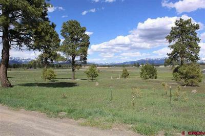 205 INDUSTRIAL CIR, Pagosa Springs, CO 81147 - Photo 1