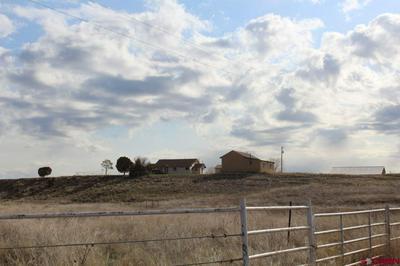 681 SALT CREEK RD, Ignacio, CO 81137 - Photo 2