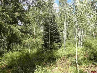 63 SULTAN DR, Durango, CO 81301 - Photo 2