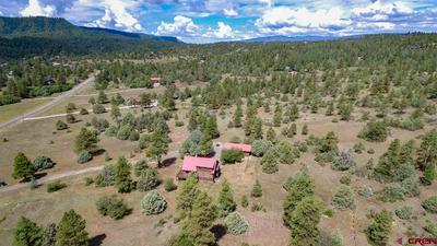 3190 MEADOWS DR, Pagosa Springs, CO 81147 - Photo 2