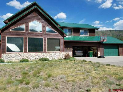 196 MILLION LN, SOUTH FORK, CO 81154 - Photo 1