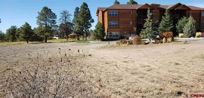 109 ACE CT, Pagosa Springs, CO 81147 - Photo 1