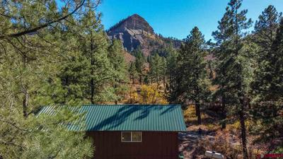 366 WEASEL DR, Pagosa Springs, CO 81147 - Photo 1