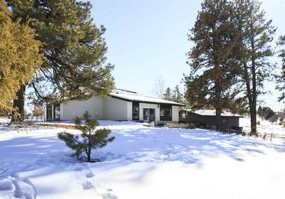 232 W MCCABE ST, Pagosa Springs, CO 81147 - Photo 2