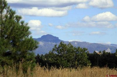 309 PROSPECT BLVD, Pagosa Springs, CO 81147 - Photo 2