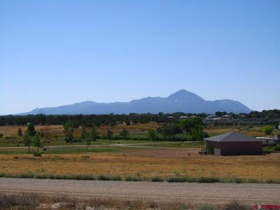 TBD ROAD 28.3, Dolores, CO 81323 - Photo 1
