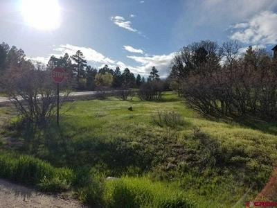 8 CABALLERO DR, Pagosa Springs, CO 81147 - Photo 2